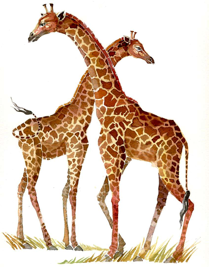Eve Drawing Giraffe