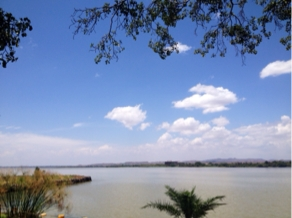 Our lunchtime view of Lake Tana