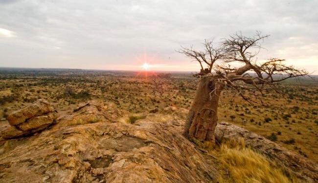 Sunset over Tuli Block, Botswana