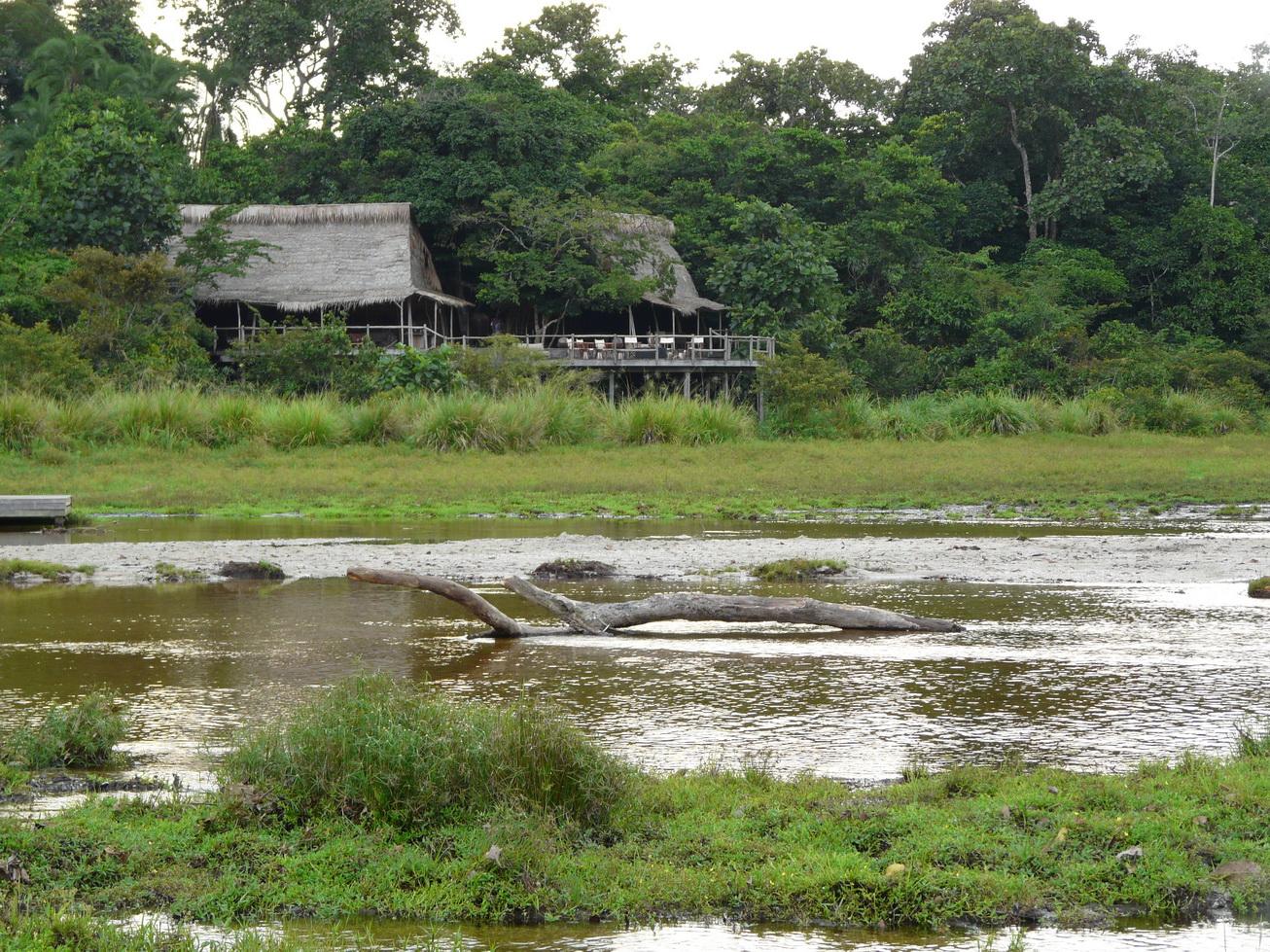 Ngaga Camp, Odzala-Kokoua National Park