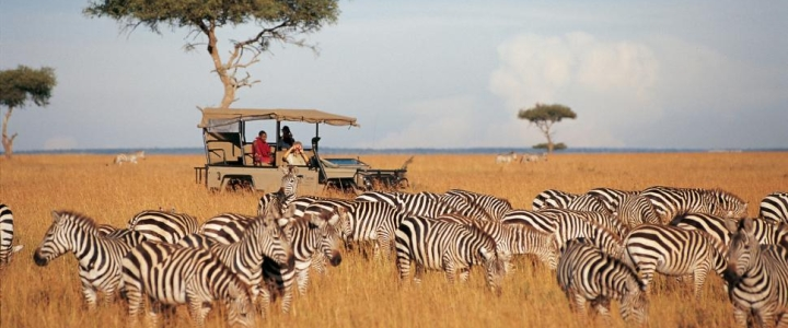 Top destinations for African safaris, mountain or beach holidays and cultural tours
