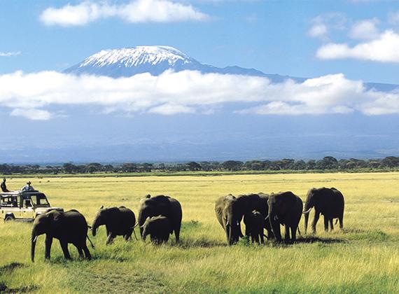 Amboseli National Park Images Amboseli National Park