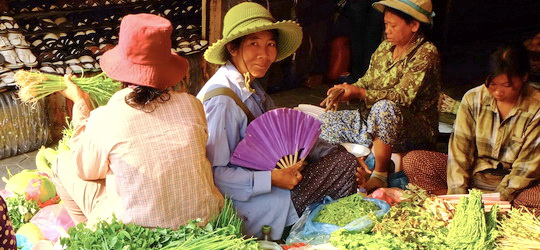 Cambodia Holiday - Siem Reap market