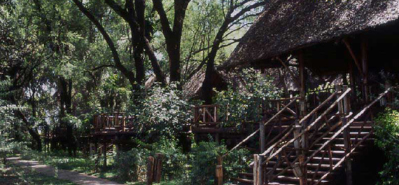 Samburu Intrepids Samburu National Reserve Kenya