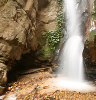 Gombe Stream National Park